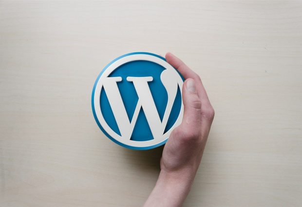 מה זה וורדפרס WordPress? מדריך למתחילים